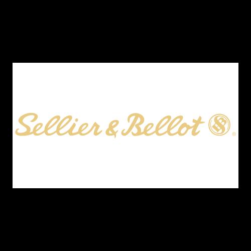 PALLE N° 2943 CAL. 7,62 X 39 SP 123 GRANI SELLIER & BELLOT ( CONFEZIONE BASE DA 100 Pcs)